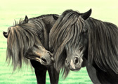 Pony, Equine Art - Black And Green