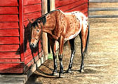 Western, Equine Art - A Hard Day