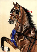 Saddlebred, Equine Art - Blue Ribbon