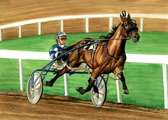 Standardbred, Equine Art - Blue and Bay