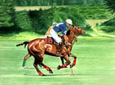 Polo, Equine Art - Chasing Down the Ball