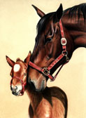 Mares and Foals, Equine Art - Don't Knock Me Over