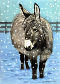 Donkey and Mule Art - Dressed for the Weather