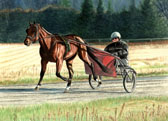 Standardbred, Equine Art - Early Winter Workout