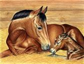Mares and Foals, Equine Art - First Baby