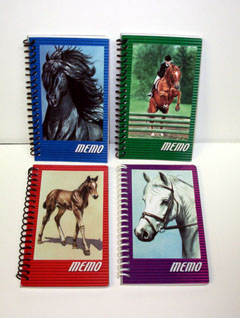 Small Horse Notebooks