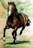 Thoroughbred, Equine Art - Horsepower