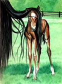 Mares and Foals, Equine Art - I Cant See