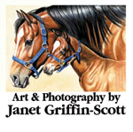 Art and Photography by Janet Griffin-Scott