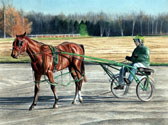 Standardbred, Equine Art - Joe and the Colt
