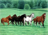Mares and Foals, Equine Art - Maternity Ward