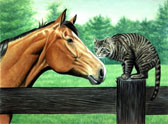 Equine Art - Meeting at the Fencepost