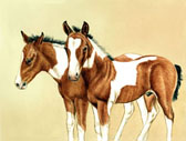 Western, Equine Art - Pair of Paint Colts