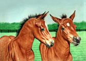 Mares and Foals, Equine Art - Personal Space