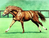 Thoroughbred, Equine Art - Secretariat