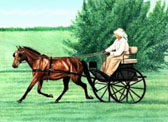 Carriage Driving, Equine Art - Smart Trot