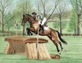 Eventing, Equine Art - Straw Bale Jump