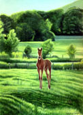 Mares and Foals, Equine Art - Summer Evening