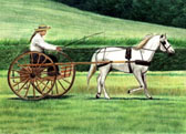 Carriage Driving, Equine Art - Sunday Drive