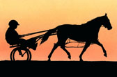 Standardbred, Equine Art - Sunset Standardbred