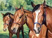 Mares and Foals, Equine Art - The Nannies