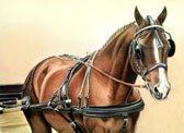 Carriage Driving, Equine Art - Waiting
