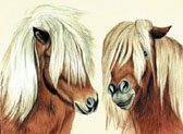 Pony, Equine Art - We Both Need a Trim