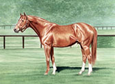 Thoroughbred, Equine Art - Secretariat in his Pasture
