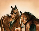 Standardbred, Equine Art - Wild and Dangerous